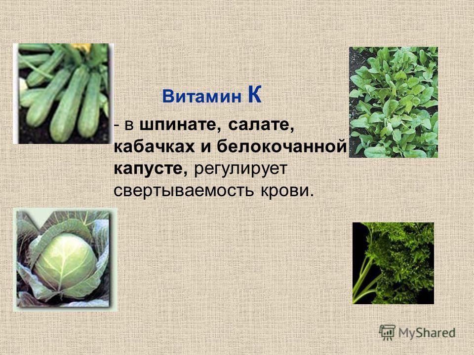 Витамин К в шпинате, салате, кабачках и белокочанной капусте, регулирует свертываемость крови.