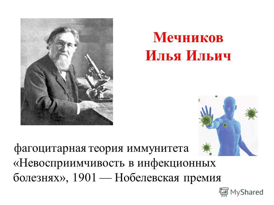 Мечников Илья Ильич фагоцитарная теория иммунитета «Невосприимчивость в инфекционных болезнях», 1901 Нобелевская премия