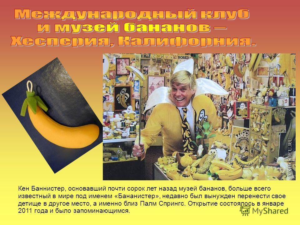 Кен Баннистер, основавший почти сорок лет назад музей бананов, больше всего известный в мире под именем «Бананистер», недавно был вынужден перенести свое детище в другое место, а именно близ Палм Спрингс. Открытие состоялось в январе 2011 года и было