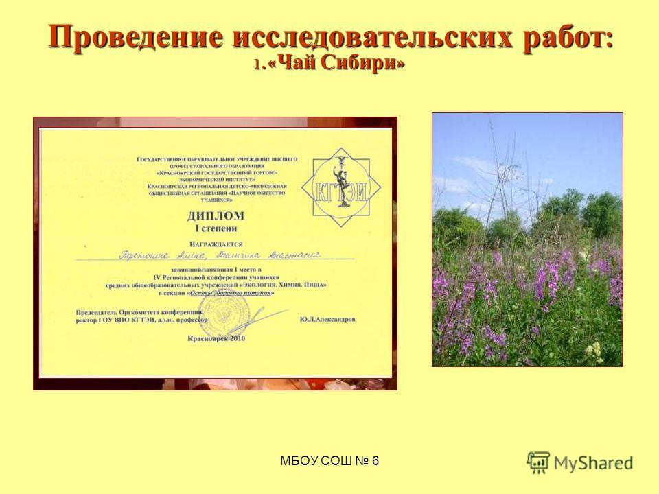 МБОУ СОШ 6 1.« Чай Сибири » Проведение исследовательских работ :