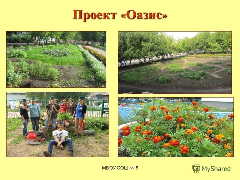 МБОУ СОШ 6 Проект « Оазис »