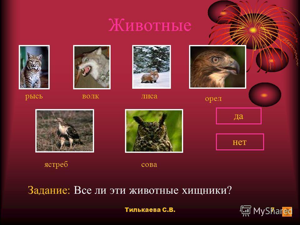 Тилькаева С.В.6 Картины Задание: Кто художник этих картин? РепинШишкинВаснецовЛевитан