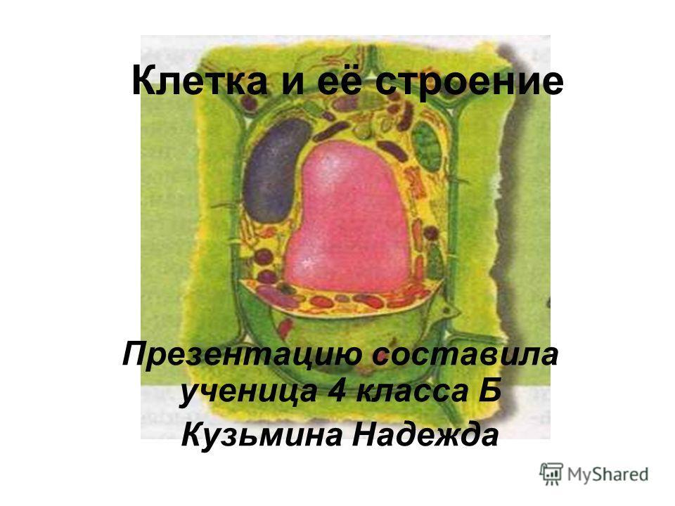 Клетка и её строение Презентацию составила ученица 4 класса Б Кузьмина Надежда
