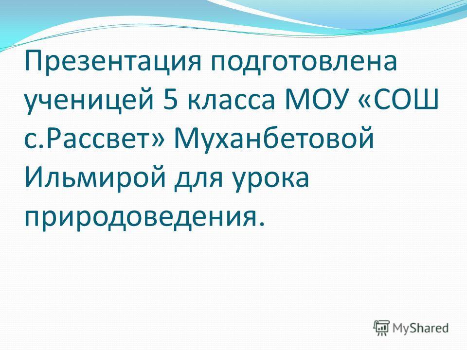 Презентация подготовлена ученицей 5 класса МОУ «СОШ с.Рассвет» Муханбетовой Ильмирой для урока природоведения.