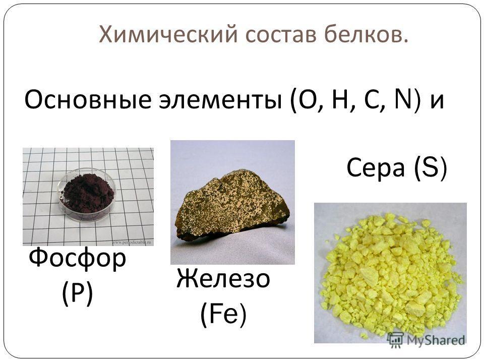 Химический состав белков. Фосфор ( Р ) Железо (Fe) Сера (S) Основные элементы ( О, Н, С, N) и