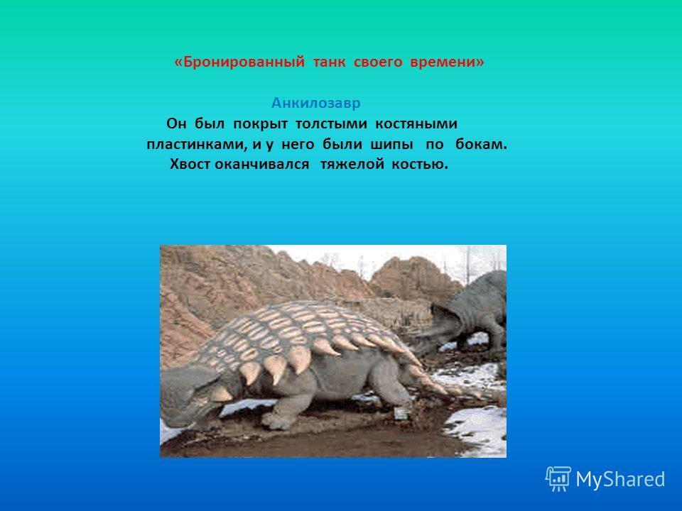 «Бронированный танк своего времени» Анкилозавр Он был покрыт толстыми костяными пластинками, и у него были шипы по бокам. Хвост оканчивался тяжелой костью.