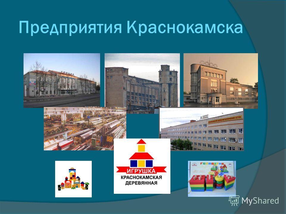 Предприятия Краснокамска