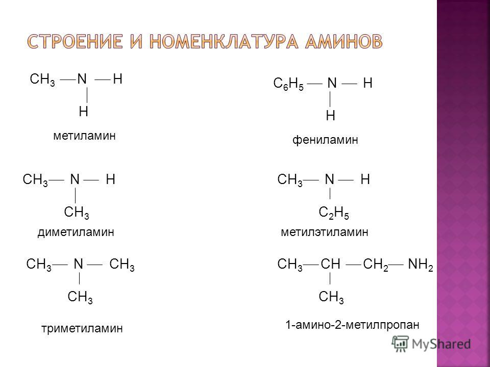CH 3 N H H CH 3 N H CH 3 CH 3 N CH 3 CH 3 C 6 H 5 N H H CH 3 N H C 2 H 5 CH 3 CH CH 2 NH 2 CH 3 метиламин диметиламин триметиламин фениламин метилэтиламин 1-амино-2-метилпропан