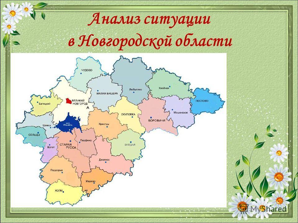 Анализ ситуации в Новгородской области