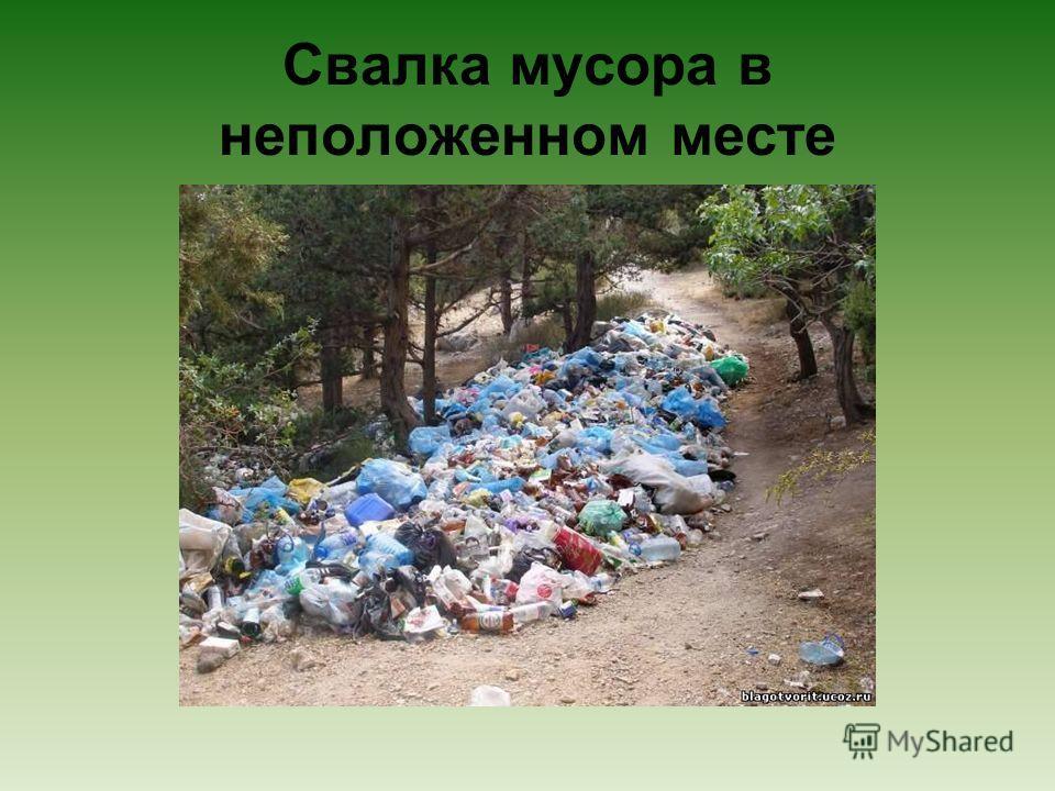 Свалка мусора в неположенном месте