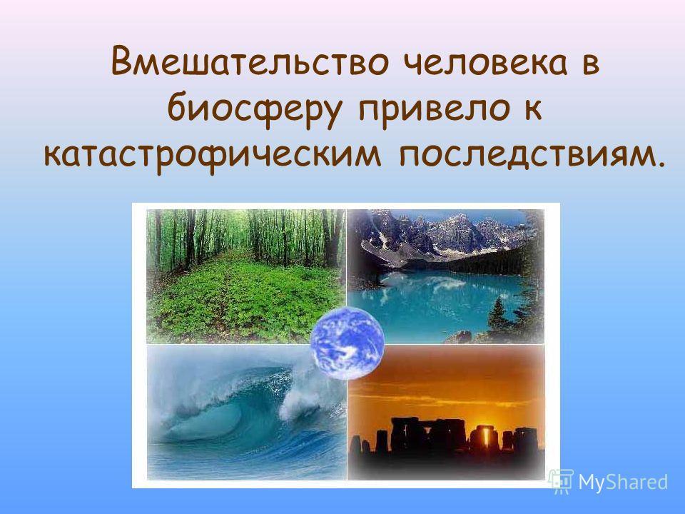 Вмешательство человека в биосферу привело к катастрофическим последствиям.