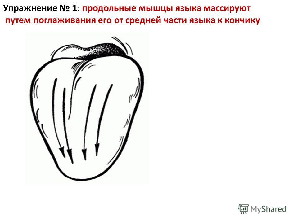 Упражнение 1: продольные мышцы языка массируют путем поглаживания его от средней части языка к кончику
