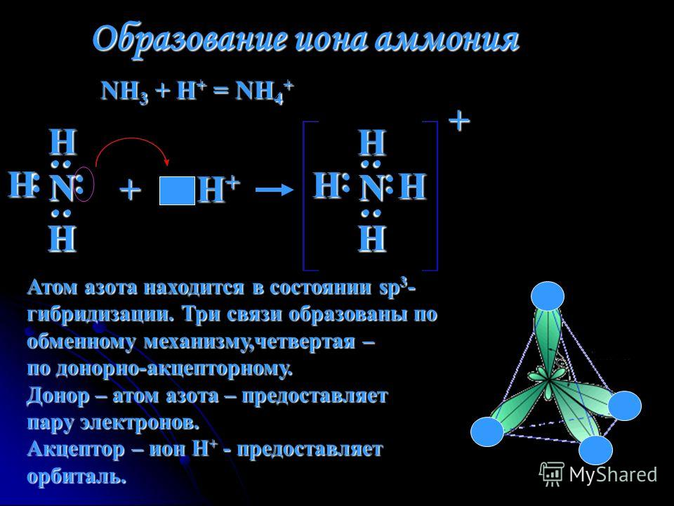 Образование иона аммония NH 3 + H + = NH 4 + Н : : Н Н : : Н NN : Н : + H + Н : : Н Н : : NN : Н : + Атом азота находится в состоянии sp 3 - гибридизации. Три связи образованы по обменному механизму,четвертая – по донорно-акцепторному. Донор – атом а
