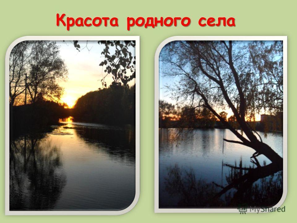 Красота родного села