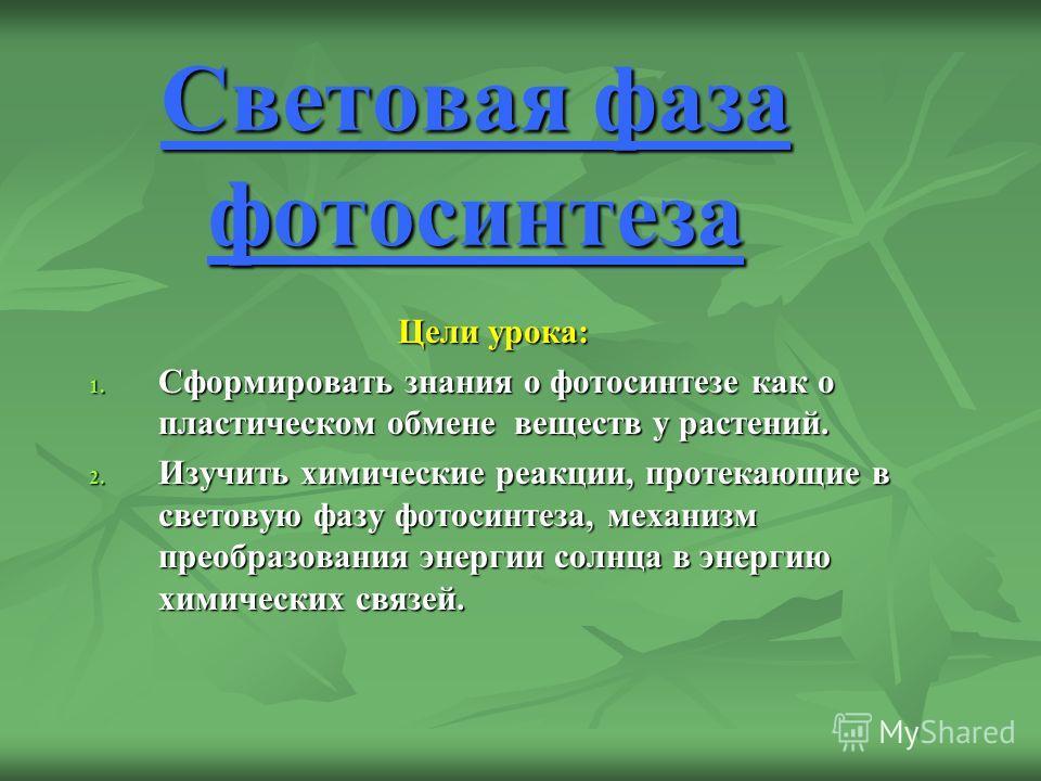 Световая фаза фотосинтеза Цели