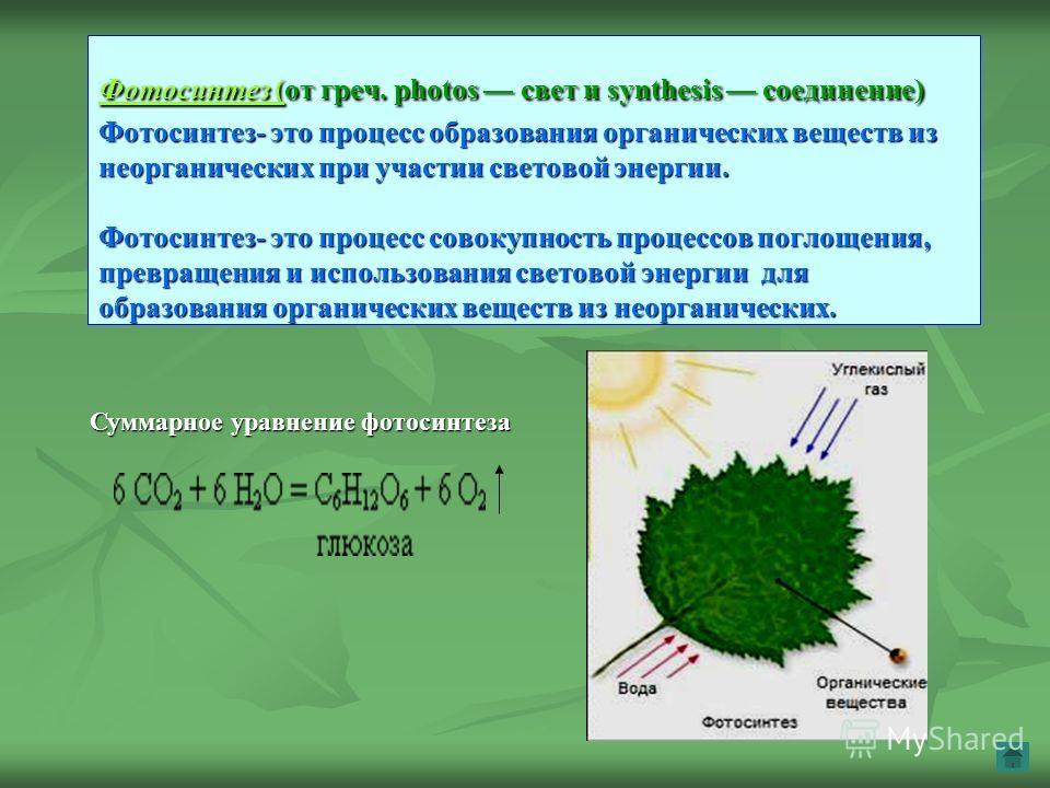 Фотосинтез (Фотосинтез (от греч. photos свет и synthesis соединение) Фотосинтез- это процесс образования органических веществ из неорганических при участии световой энергии. Фотосинтез- это процесс совокупность процессов поглощения, превращения и исп