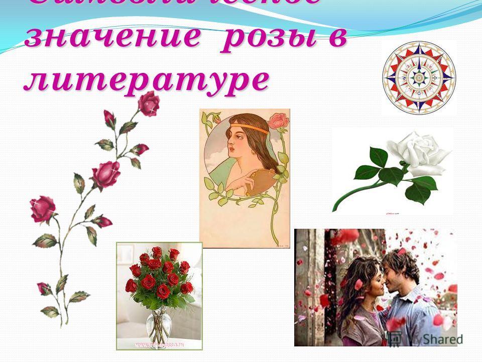 Символическое значение розы в литературе
