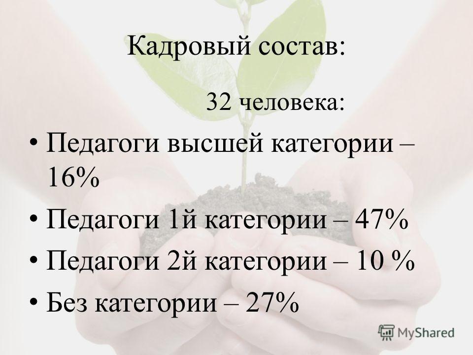 Кадровый состав: 32 человека: Педагоги высшей категории – 16% Педагоги 1й категории – 47% Педагоги 2й категории – 10 % Без категории – 27%