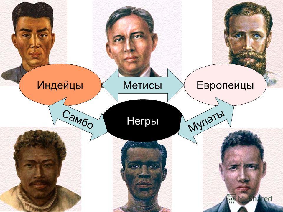 ИндейцыЕвропейцы Негры Метисы Самбо Мулаты