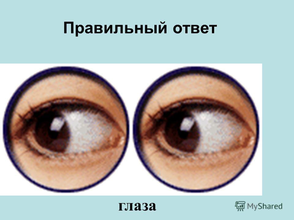 Эту часть тела называют «зеркало души».Она такая же хрупкая и восстановить её трудно. ноги носуши глазарот
