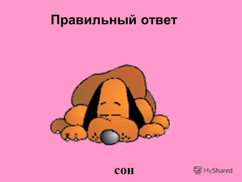 Без этой составляющей человек не может прожить больше трех суток,на нее отводится больше всего времени, это слаще всего на Земле!!!. сон питание свежий воздух отдых труд движение