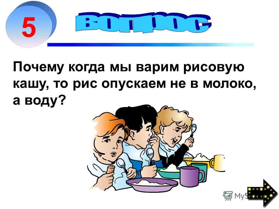 5 Почему когда мы варим рисовую кашу, то рис опускаем не в молоко, а воду?