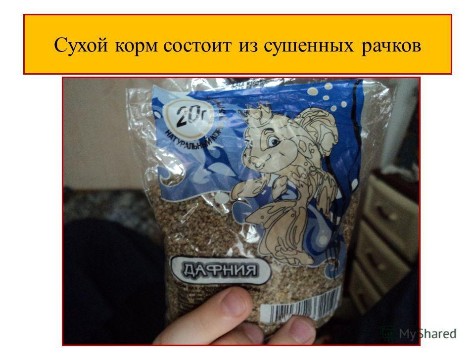 Сухой корм состоит из сушенных рачков