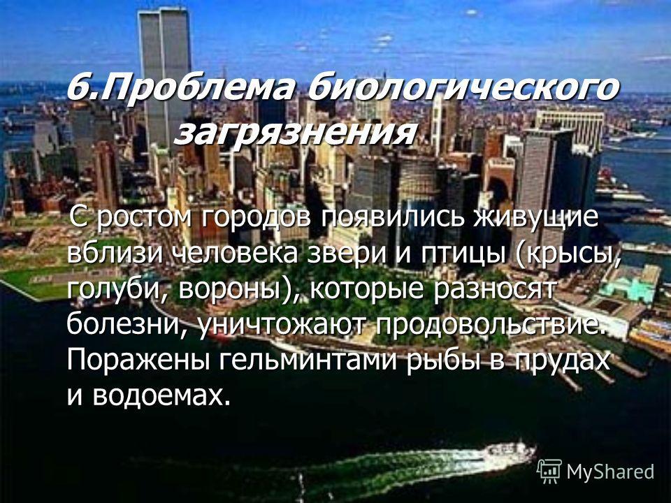 6.Проблема биологического загрязнения 6.Проблема биологического загрязнения С ростом городов появились живущие вблизи человека звери и птицы (крысы, голуби, вороны), которые разносят болезни, уничтожают продовольствие. Поражены гельминтами рыбы в пру