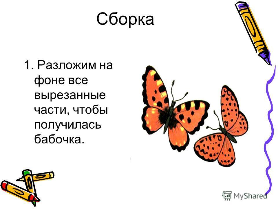 Сборка 1. Разложим на фоне все вырезанные части, чтобы получилась бабочка.