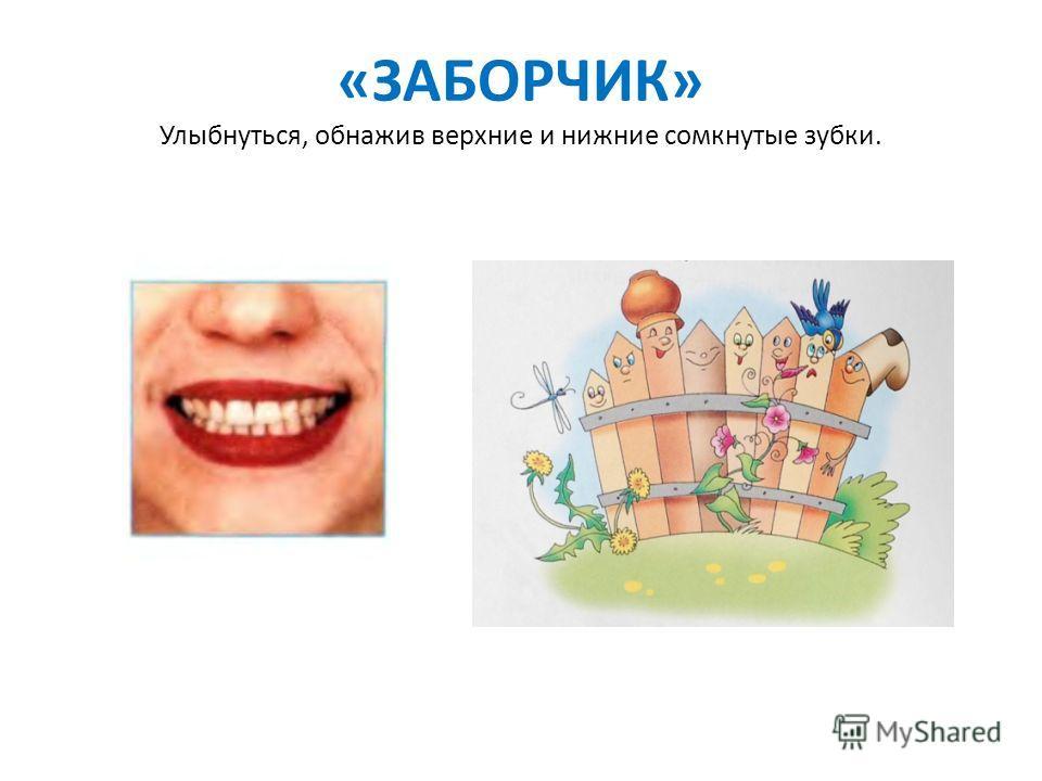 «ЗАБОРЧИК» Улыбнуться, обнажив верхние и нижние сомкнутые зубки.