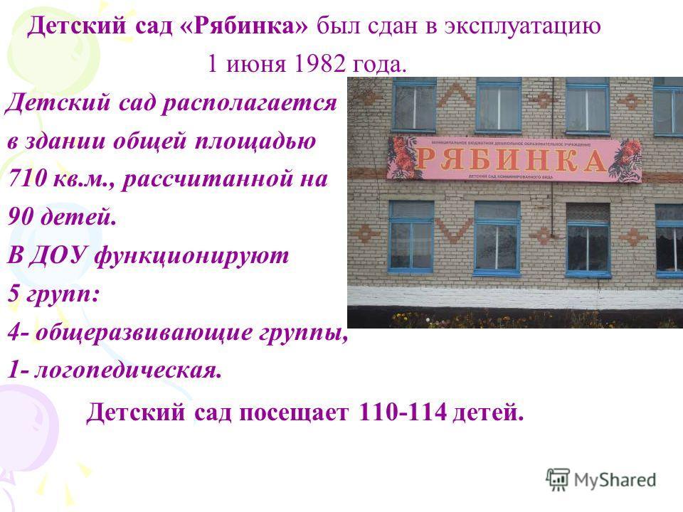 Детский сад «Рябинка» был сдан в эксплуатацию 1 июня 1982 года. Детский сад располагается в здании общей площадью 710 кв.м., рассчитанной на 90 детей. В ДОУ функционируют 5 групп: 4- общеразвивающие группы, 1- логопедическая. Детский сад посещает 110