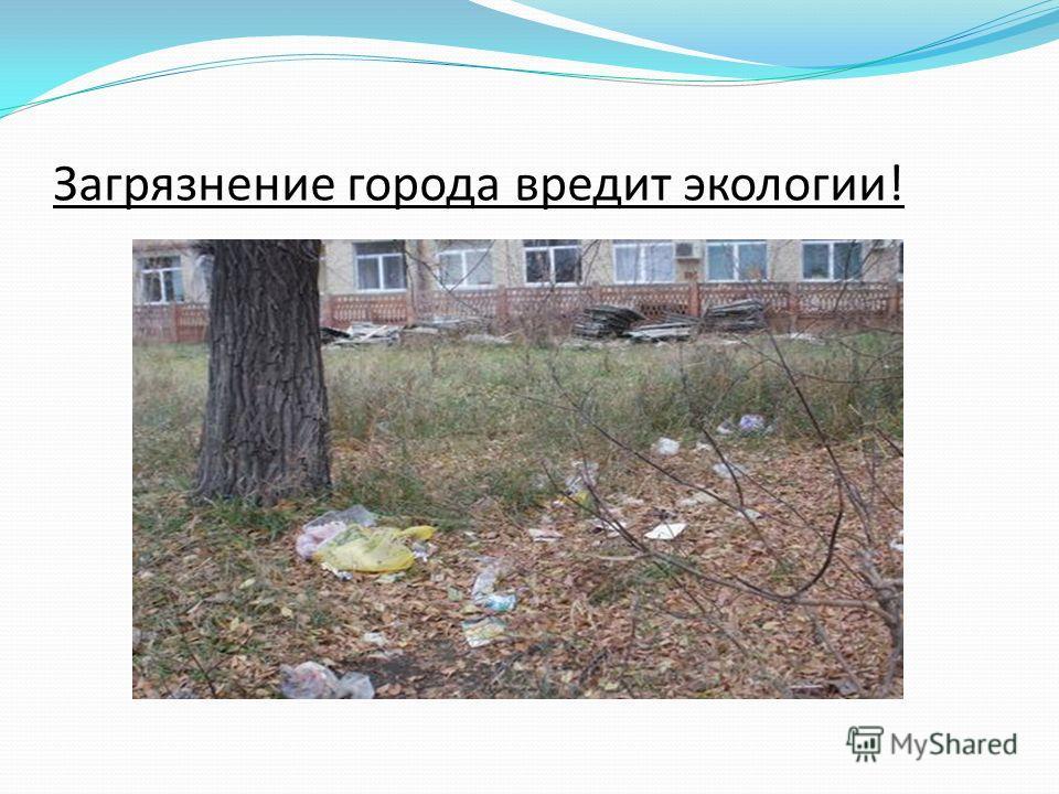 Загрязнение города вредит экологии!