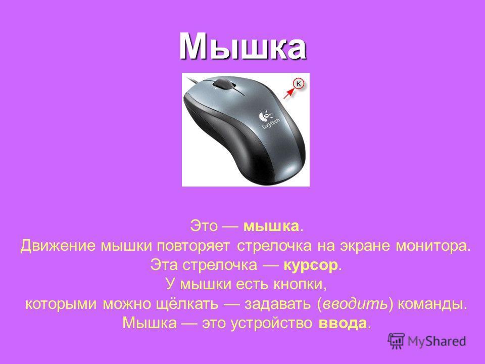 Мышка Это мышка. Движение мышки повторяет стрелочка на экране монитора. Эта стрелочка курсор. У мышки есть кнопки, которыми можно щёлкать задавать (вводить) команды. Мышка это устройство ввода.