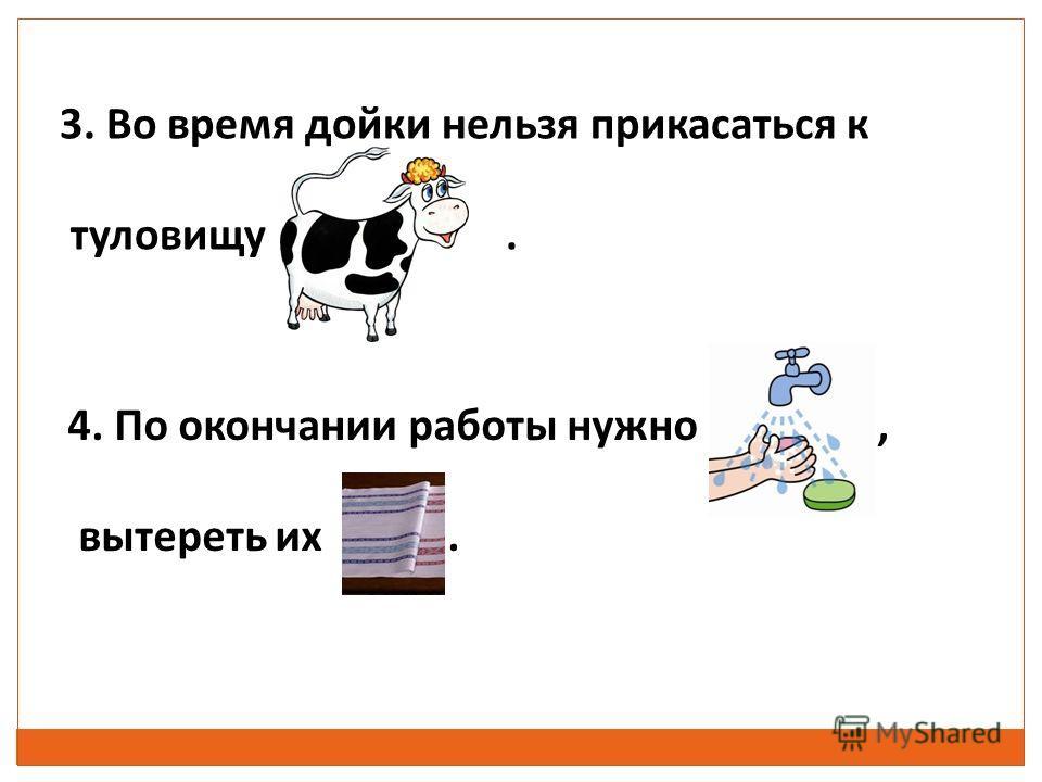 3. Во время дойки нельзя прикасаться к туловищу. 4. По окончании работы нужно, вытереть их.