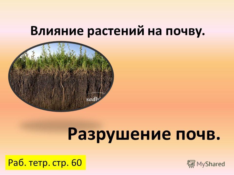 Влияние растений на почву. Разрушение почв. Раб. тетр. стр. 60
