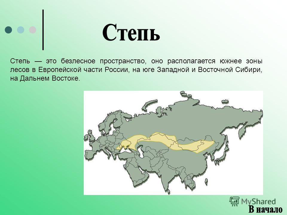 Степь это безлесное пространство, оно располагается южнее зоны лесов в Европейской части России, на юге Западной и Восточной Сибири, на Дальнем Востоке.