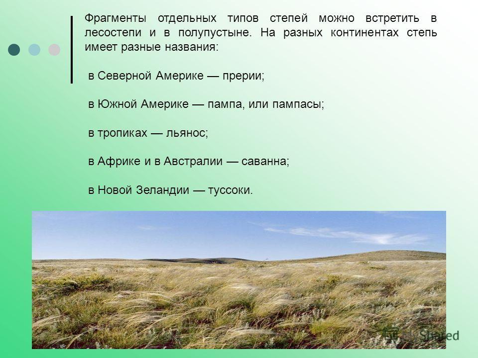 Фрагменты отдельных типов степей можно встретить в лесостепи и в полупустыне. На разных континентах степь имеет разные названия: в Северной Америке прерии; в Южной Америке пампа, или пампасы; в тропиках льянос; в Африке и в Австралии саванна; в Новой