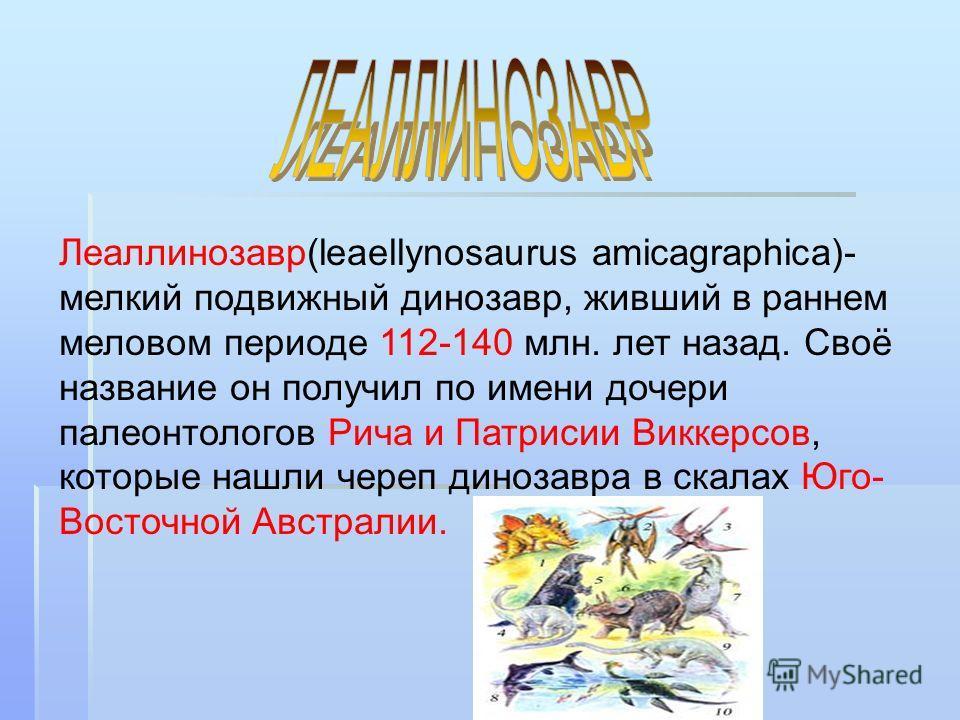 Леаллинозавр(leaellynosaurus amicagraphica)- мелкий подвижный динозавр, живший в раннем меловом периоде 112-140 млн. лет назад. Своё название он получил по имени дочери палеонтологов Рича и Патрисии Виккерсов, которые нашли череп динозавра в скалах Ю