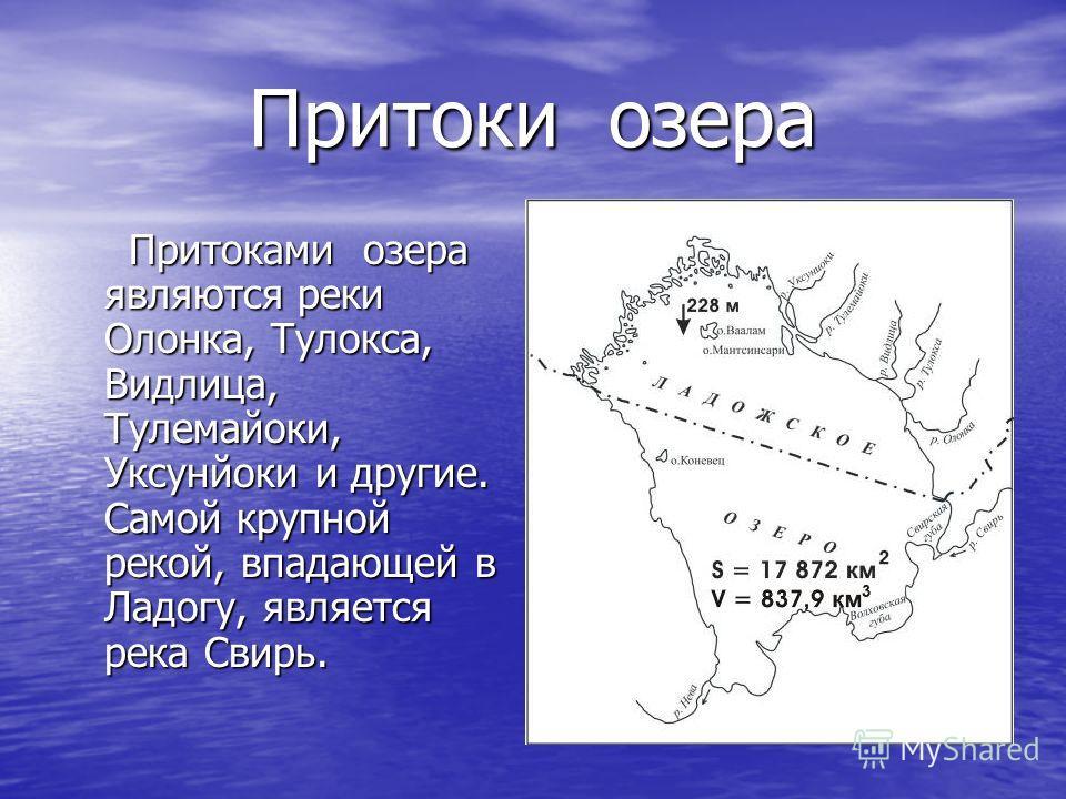 Притоки озера Притоками озера являются реки Олонка, Тулокса, Видлица, Тулемайоки, Уксунйоки и другие. Самой крупной рекой, впадающей в Ладогу, является река Свирь. Притоками озера являются реки Олонка, Тулокса, Видлица, Тулемайоки, Уксунйоки и другие