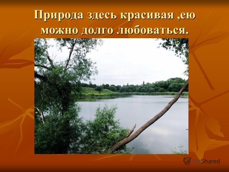 Природа здесь красивая,ею можно долго любоваться.