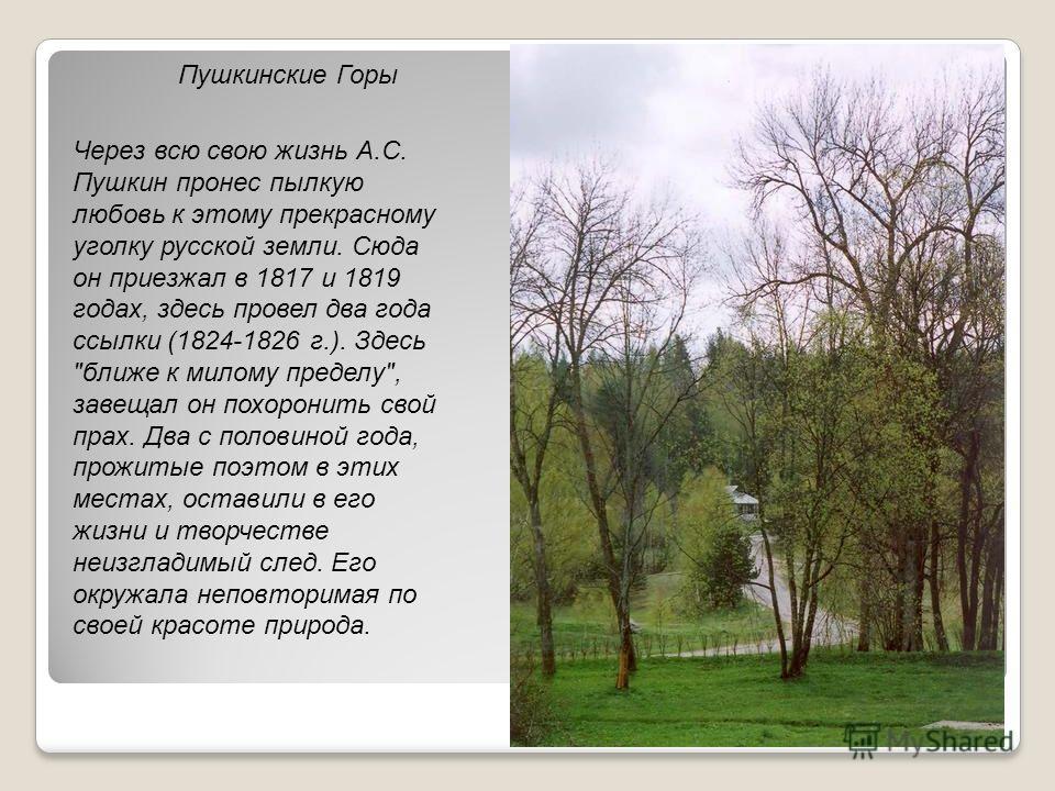 Пушкинские Горы Через всю свою жизнь А.С. Пушкин пронес пылкую любовь к этому прекрасному уголку русской земли. Сюда он приезжал в 1817 и 1819 годах, здесь провел два года ссылки (1824-1826 г.). Здесь