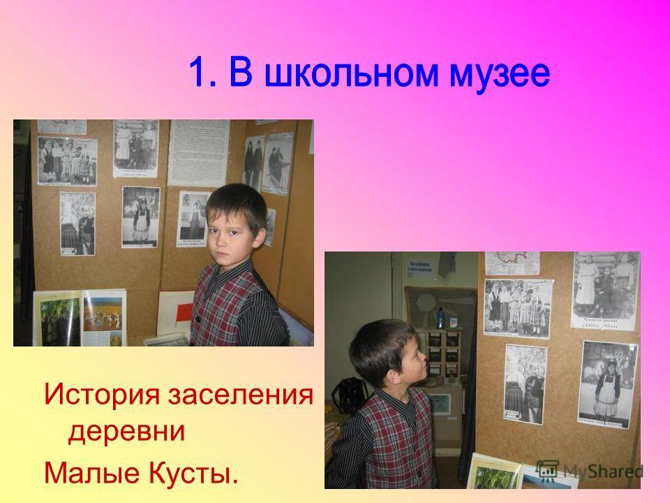 История заселения деревни Малые Кусты.
