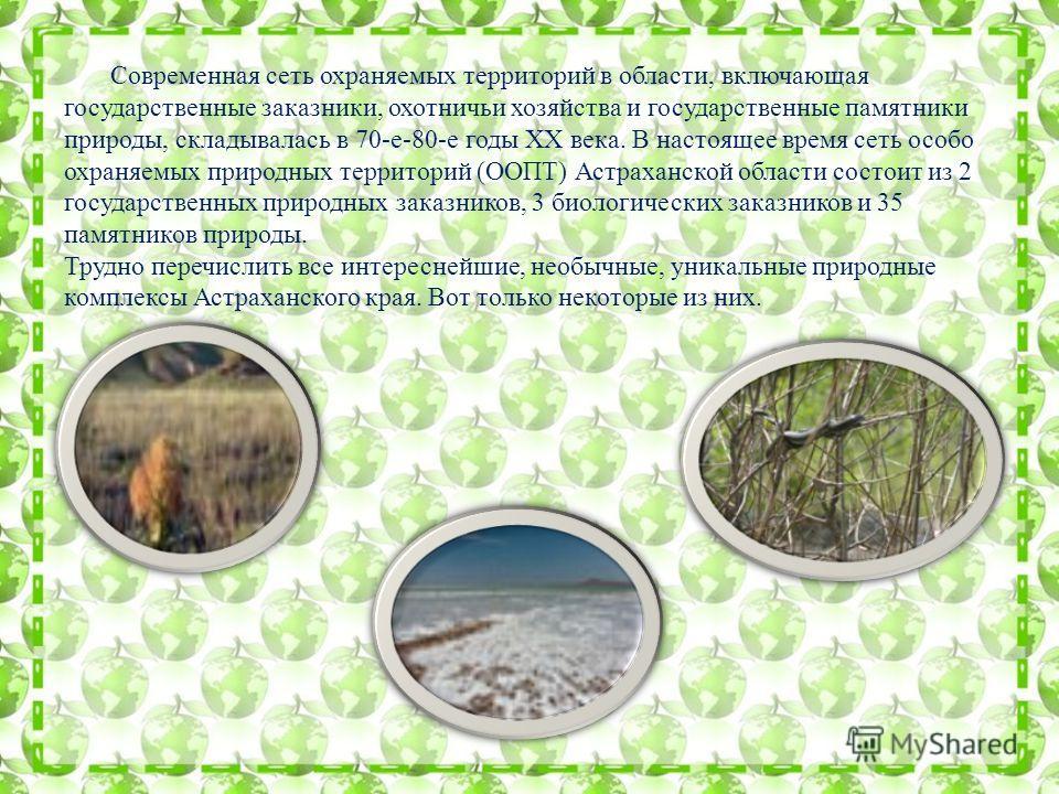Современная сеть охраняемых территорий в области, включающая государственные заказники, охотничьи хозяйства и государственные памятники природы, складывалась в 70-е-80-е годы XX века. В настоящее время сеть особо охраняемых природных территорий (ООПТ
