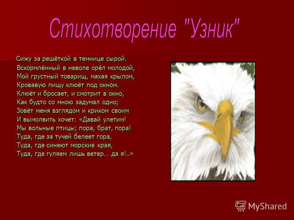 А с пушкин стих орел молодой