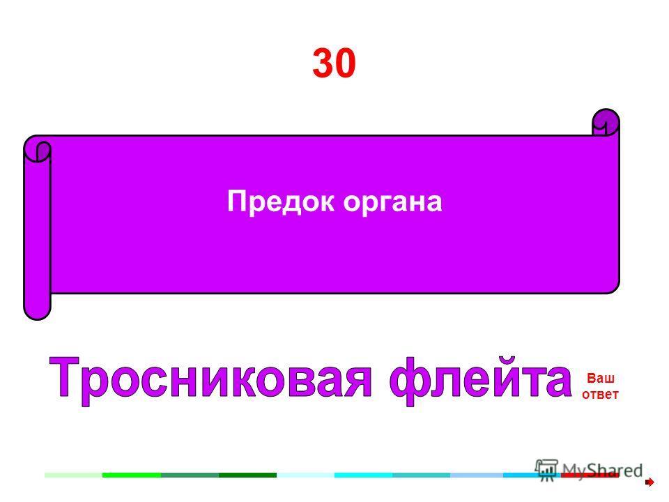 30 Предок органа Ваш ответ