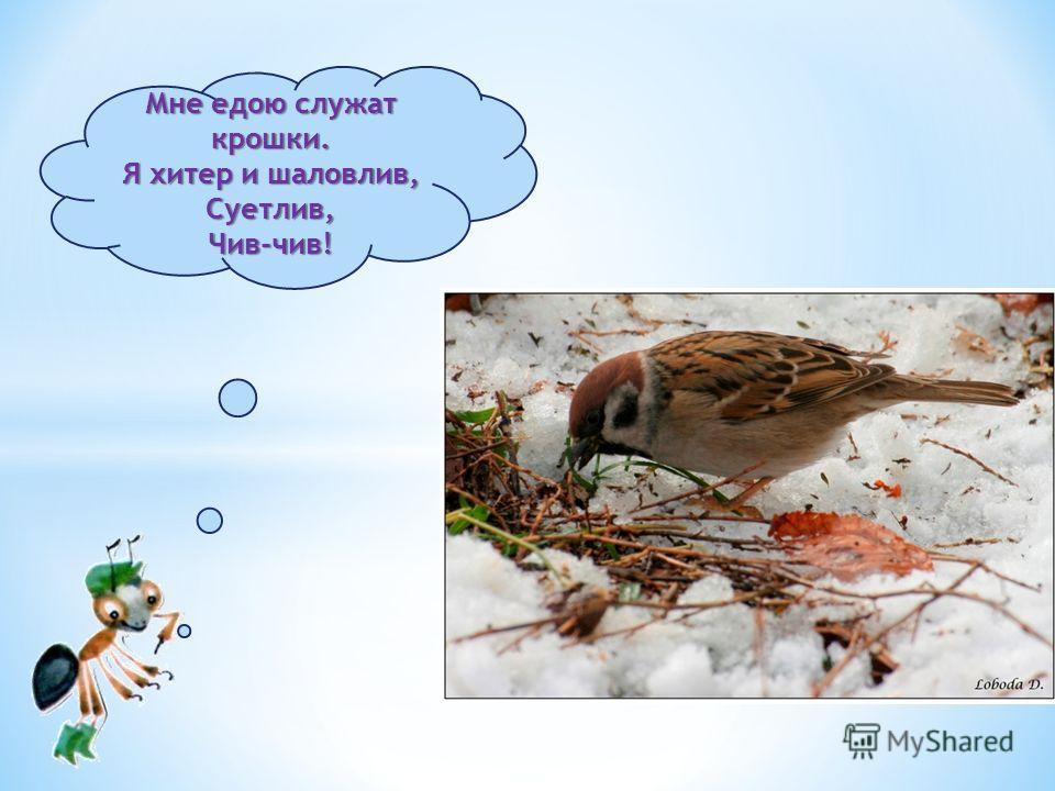 01.12.2013http://www.deti-66.ru/ 10 снегирь