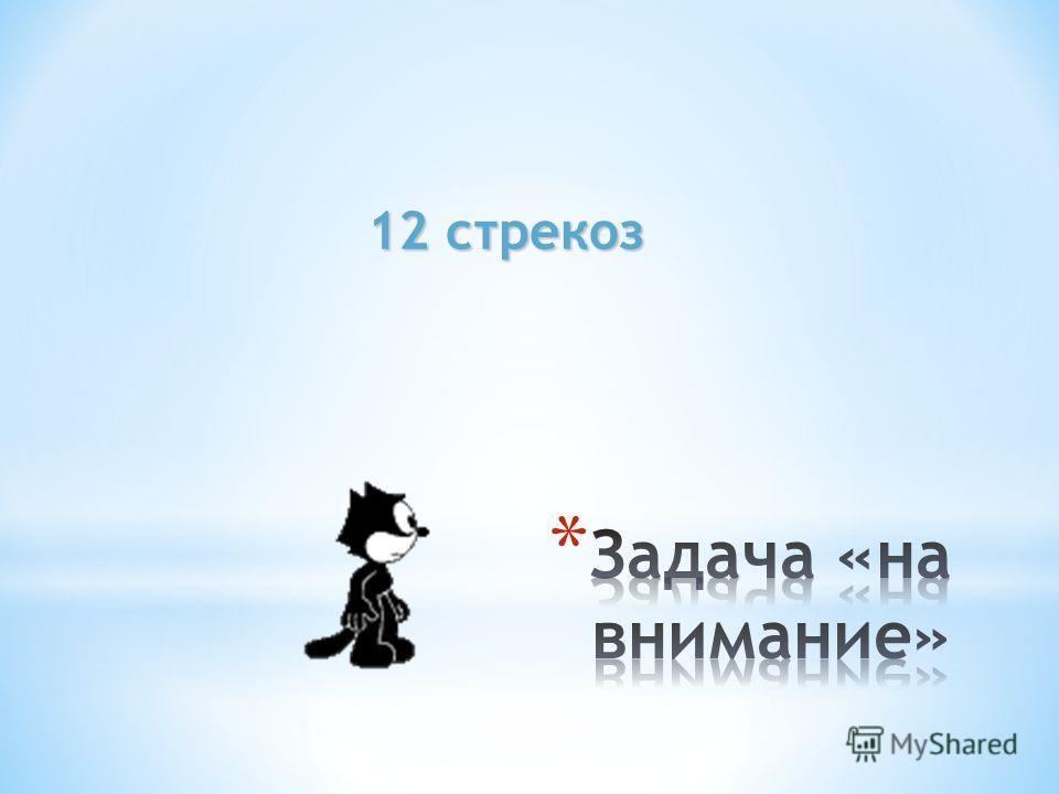 12 стрекоз