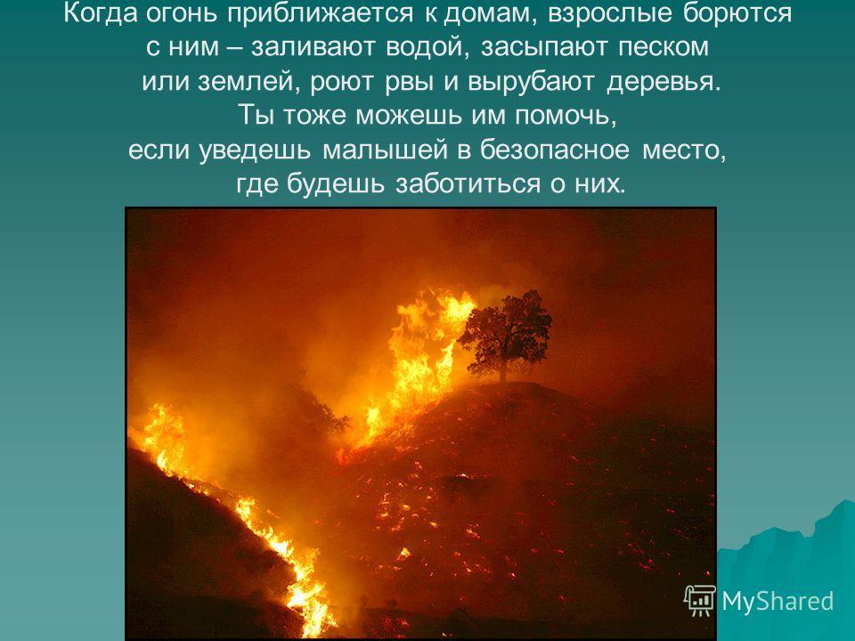 Когда огонь приближается к домам, взрослые борются с ним – заливают водой, засыпают песком или землей, роют рвы и вырубают деревья. Ты тоже можешь им помочь, если уведешь малышей в безопасное место, где будешь заботиться о них.