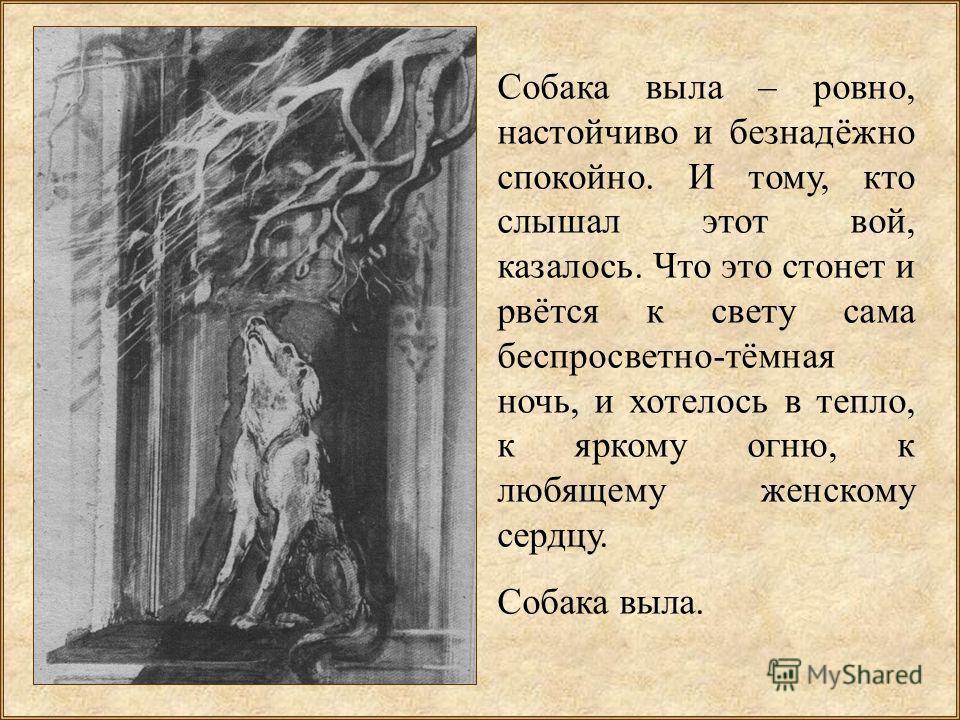 Собака выла – ровно, настойчиво и безнадёжно спокойно. И тому, кто слышал этот вой, казалось. Что это стонет и рвётся к свету сама беспросветно-тёмная ночь, и хотелось в тепло, к яркому огню, к любящему женскому сердцу. Собака выла.