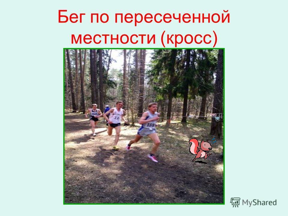 Бег по пересеченной местности (кросс)